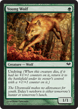 Young Wolf | Magic: The Gathering Card