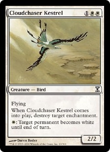 Cloud chaser Kestral